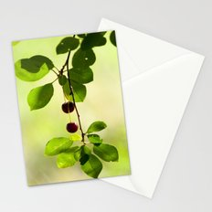 Cherries 5318 Stationery Cards