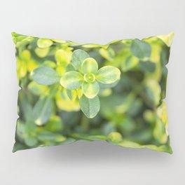 Nature floral herbal pattern Pillow Sham