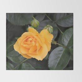"A Rose Named ""Julia Child"" Throw Blanket"