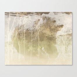 Exposed Bear Canvas Print