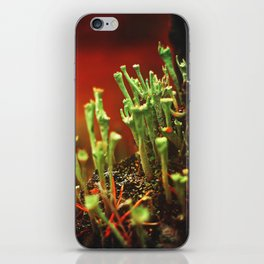 The Troubadours iPhone Skin