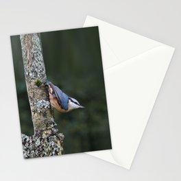 Nuthatch---(Sitta europaea) Stationery Cards