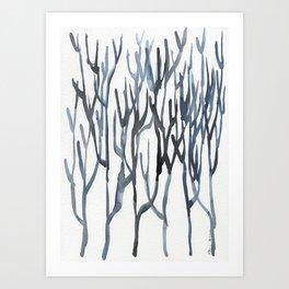 Bifurcaria bifurcata Art Print