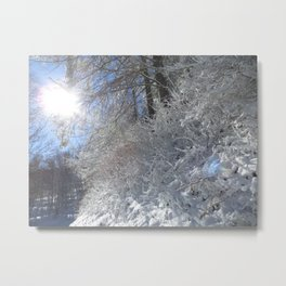 Sugarcoated Metal Print