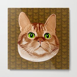 Roswell the Cat Metal Print