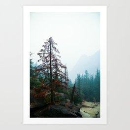 Autumn red. Art Print