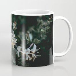 flower photography by Annie Spratt Coffee Mug