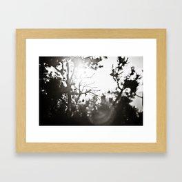 Arizona Air Framed Art Print