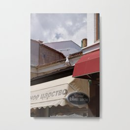 Seagull arrived in the town to say summer is coming Metal Print