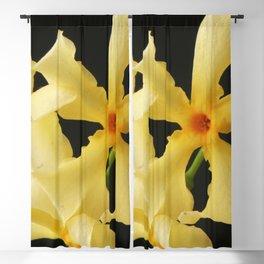 Star Jasmine Flower Blackout Curtain