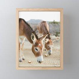 Two Donkeys Eating Apples Framed Mini Art Print