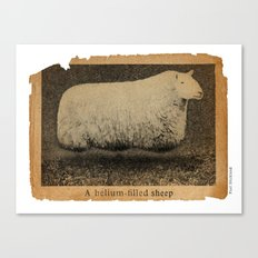 A Helium Filled Sheep Canvas Print