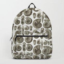 Ernst Haeckel Ammonitida Ammonite Backpack