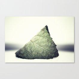 Solitude in Green Canvas Print