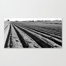 Homeland (b/w) Canvas Print