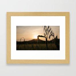 nature landscape Framed Art Print
