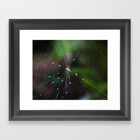Come Into My Web Framed Art Print