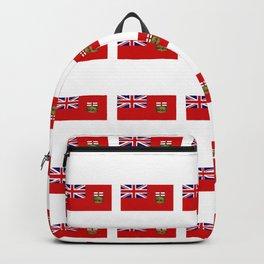 Flag of manitoba -Manitoban,rupert,Winnipeg,Brandon,Steinbach,portage,canada. Backpack