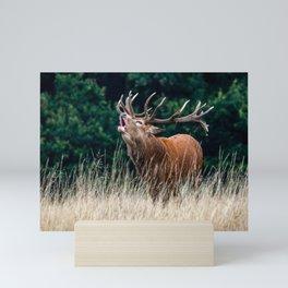 Roar. Mini Art Print