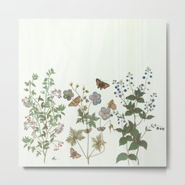 The fragility of living - botanical illustration Metal Print