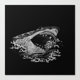 Great White 3 Canvas Print