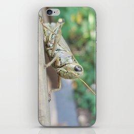 steady iPhone Skin