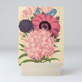 garden 015 dianthus  Dwarf Scabiosa  Sweet Pea9 Mini Art Print