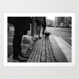 Dogs like trams Art Print