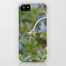 Growth and Transformation iPhone Case