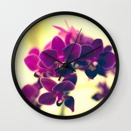 Vivid and colourful Orchidaceae Wall Clock