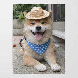 little farmer Poster