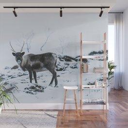 Arctic Beauty  Wall Mural