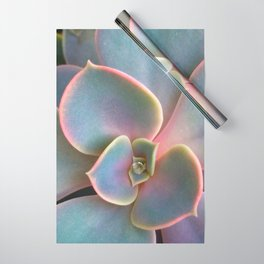 Succulent Dew Drop Wrapping Paper