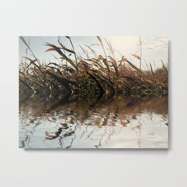 Farmland Rising Metal Print