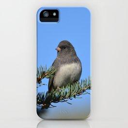 Backyard Beauty iPhone Case