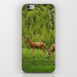 Wapiti In Yellowstone N P iPhone Skin