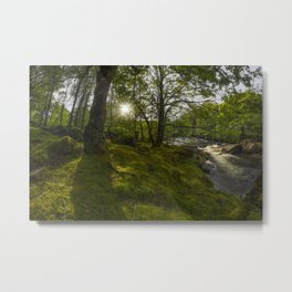 Morning River Sun Metal Print