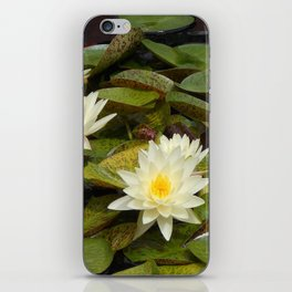 Pale Yellow Water Lilies iPhone Skin
