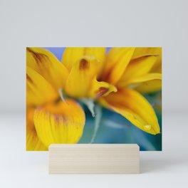 Macro shot of water drop on blooming sunflower petal Mini Art Print