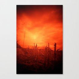 Stalk Canvas Print