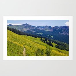 Crested butte yellow Art Print