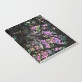 Abalone Shell 4 Notebook