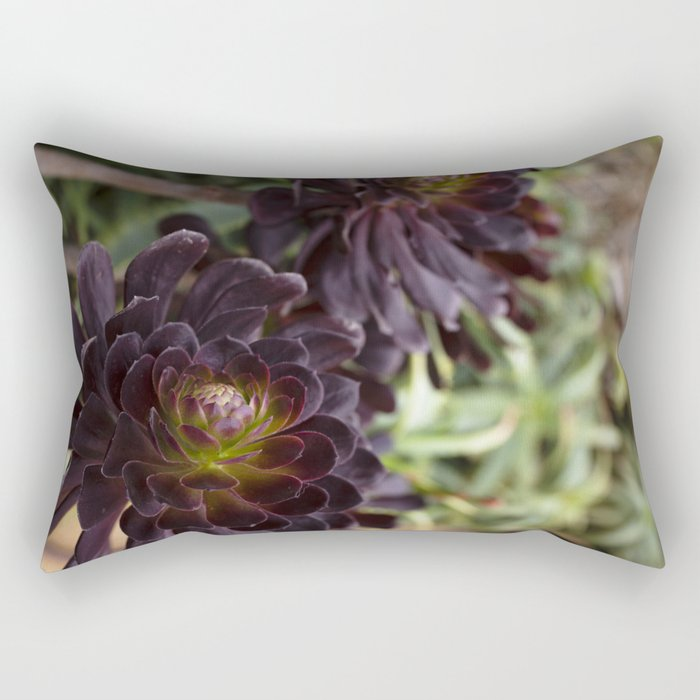 Aeonium Detail Rectangular Pillow