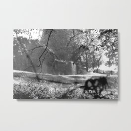 Country bench Metal Print