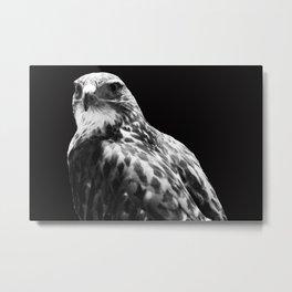 TheHawk Metal Print