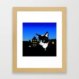 City Kitten Framed Art Print