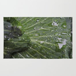 Nature's green and diamonds (2nd in the Cabbage collection) Rug