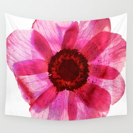 Fragile and beautiful - red anemone in white background Wall Tapestry