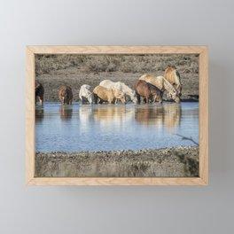 Bachelor Band at the Waterhole Framed Mini Art Print