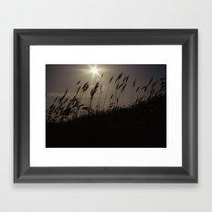 evening Framed Art Print